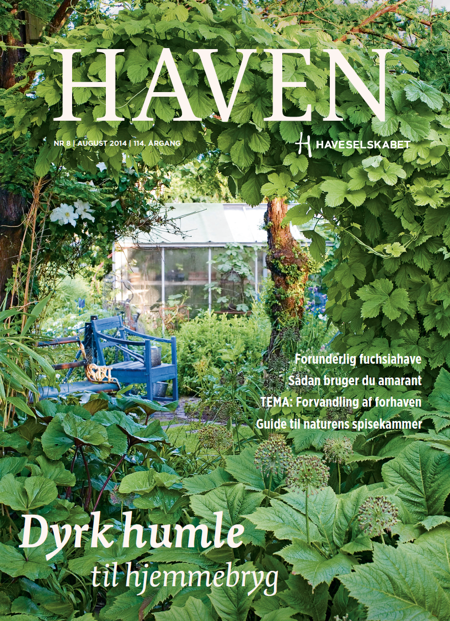 HAVEN august 2014